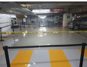 חיפוי חניה במקסיקו סיטי